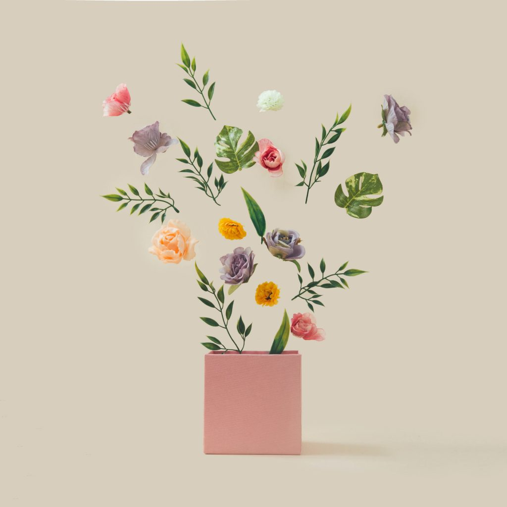 Spring flowers and leaves coming out of pink box. Spring nature concept. Season background idea.